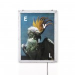 POSTER FOR PET WITH FRAME 'FRAME IT!' - 'EVIL' Cm.52,5x37,5